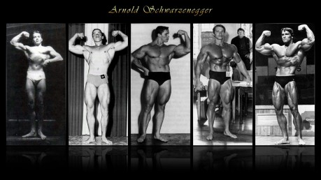 Arnold Schwarzenegger Body Builder Desktop Background Arnold Schwarzenegger
