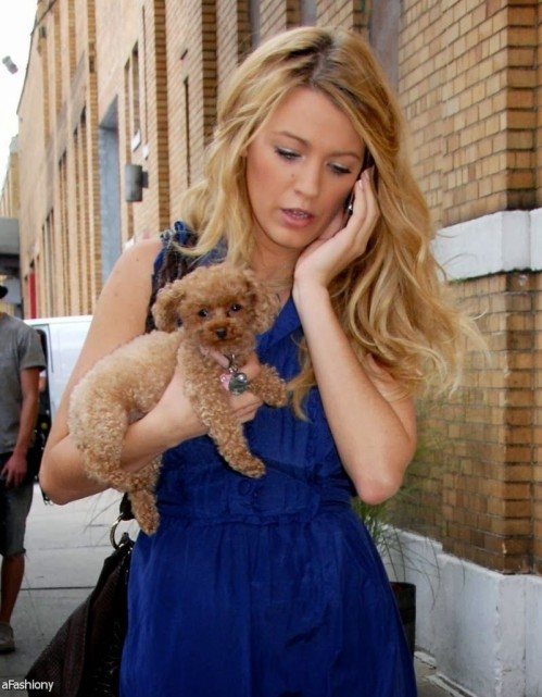 Wpid Blake Lively No Makeup