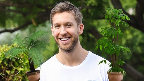 Calvin Harris Plants Calvin Harris