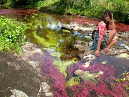 Tourist In Cayao Cristales Cano Crystales