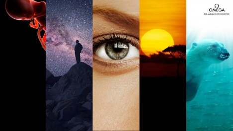 Cosmos: A Spacetime Odyssey Hd Photo