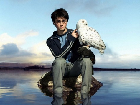 Daniel Radcliffe High Definition Wallpapers