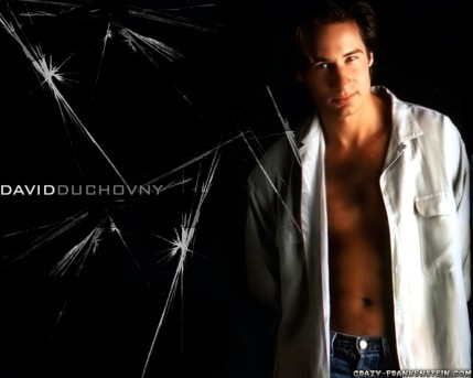David Duchovny Male Celebrity Wallpapers David Duchovny