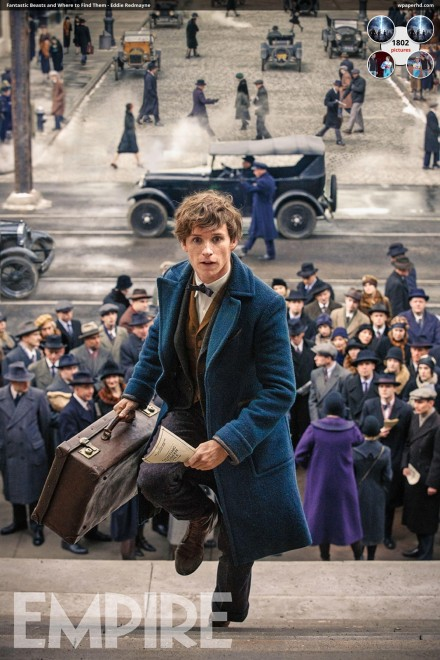 Fantastic Beasts And Where To Find Them Eddie Redmayne Qam Fantastic Beasts And Where To Find Them