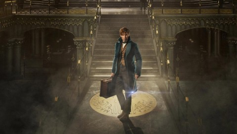 Fantastic Beasts And Where To Find Them Hd Wallpaper Fantastic Beasts And Where To Find Them