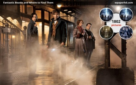 Fantastic Beasts And Where To Find Them Rgme Fantastic Beasts And Where To Find Them