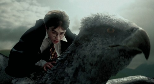 Will Fantastic Beasts And Where To Find Them Start Harry Potter Cinematic Universe It Fantastic Beasts And Where To Find Them