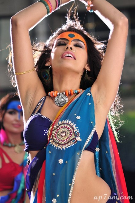 Gabriela Bertante Item Song Stills In Dcmgabrielaimage Gabriela Bertante