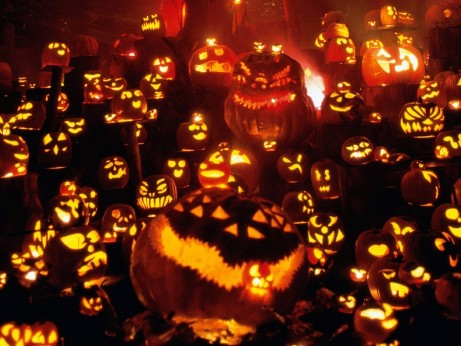 Wallpaper And Halloween Pumpkin Lights Free Stock Photo Halloween Pumpkin Wallpaper Free Hd Images For Android Iphone Ipad And Screensavers Desktop Pumpkin