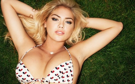 Kate Upton Hd Wallpapers For Desktop Reasons Kate Upton And Cameron Diaz The Other Woman Is