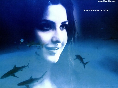 Katrina Kaif Wallpapers Wallpaper