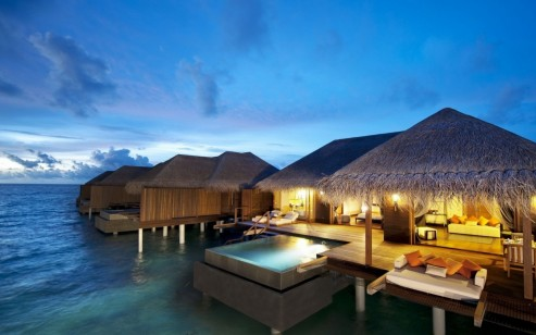 Nature Summer Season Maldives Hotel Hotels