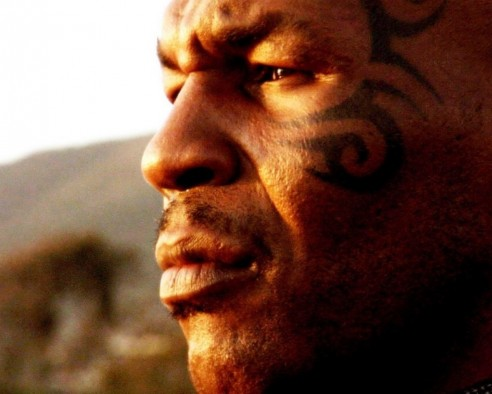 Mike Tyson Wallpaper Hd Wallpapers Pub Mike Tyson Wallpaper Wallpaper