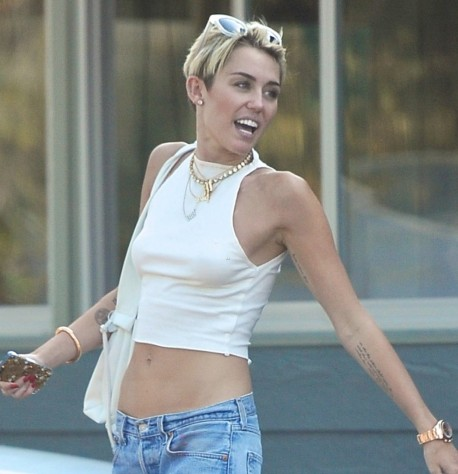 Hot Miley Cyrus Belly Pictures Celebrity Stomach Hot