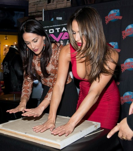 Brie Bella Nikki Bella Hot