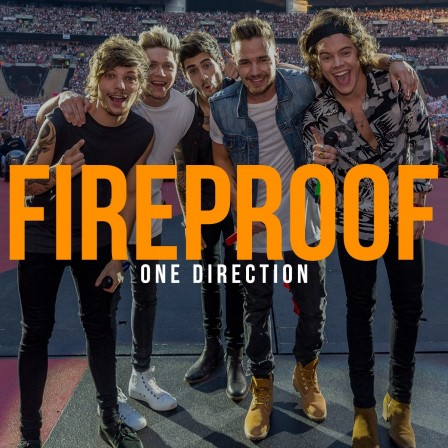 One Direction Fireproof Cover