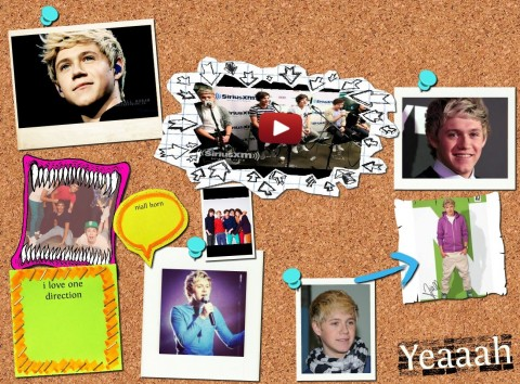 Pinboard Glog By Oedoolan One Direction Niall Horn Source Niall