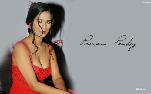 Poonam Pandey Cleavage Photoshoot Hd Wallpaper