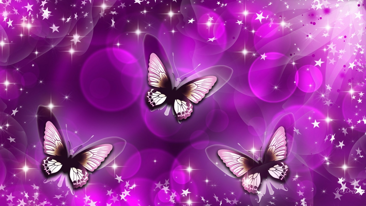 Hd Purple Love Butterfly Real