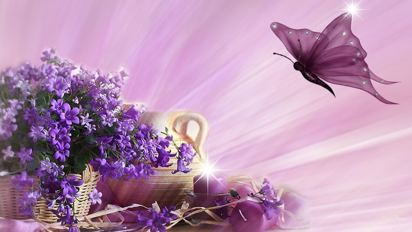 Purple Butterfly Wallpaper Desktop Background Kk Movie
