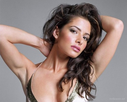 Sarah Shahi Person Of Interest Wallpaper Sarah Shahi