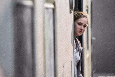 Shailene Woodley Divergent Movie Wallpaper Shailene Woodley