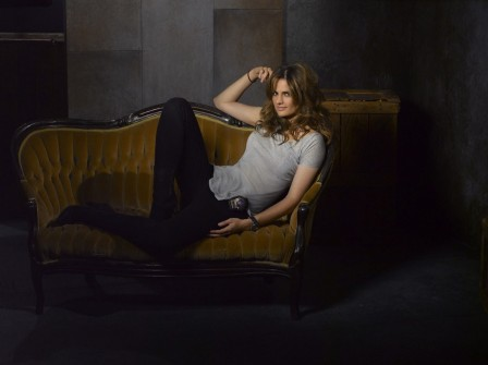 Stana Katic Castle Wallpaper Stana Katic