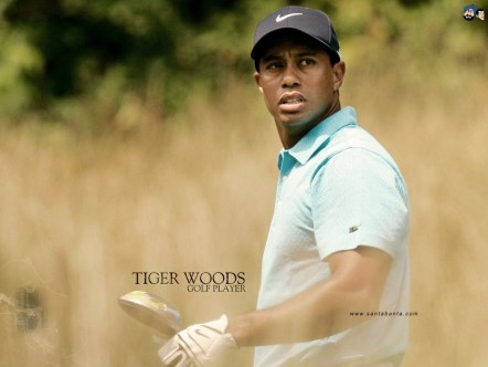 Tiger Woods Player Golf Wallpaper Tiger Woods
