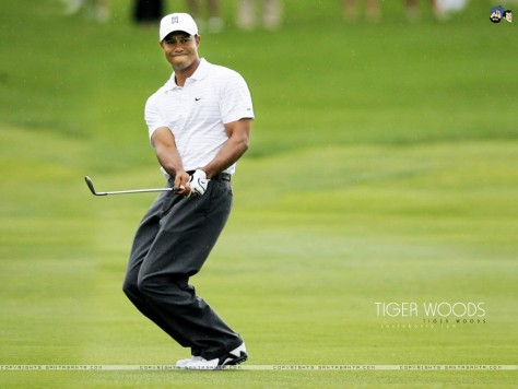 Tiger Woods Wallpaper Tiger Woods