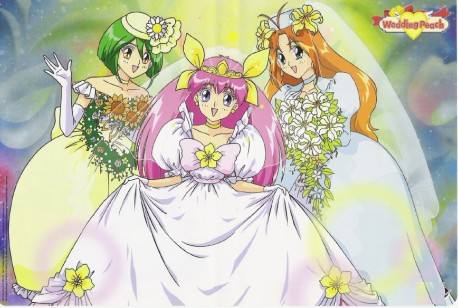 Wedding Peach Wedding Peach